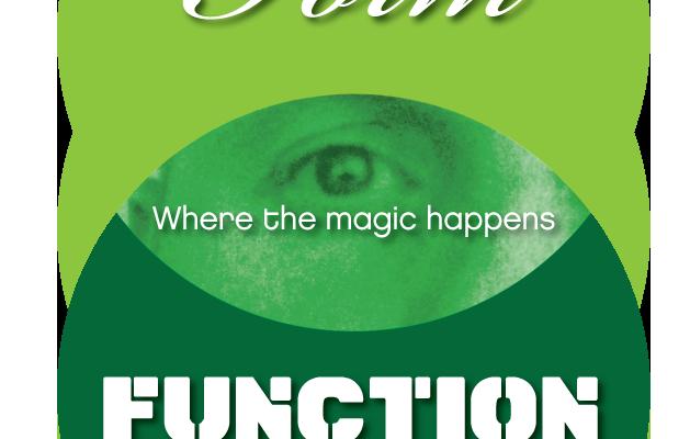 Form vs. Function vs.Flawed